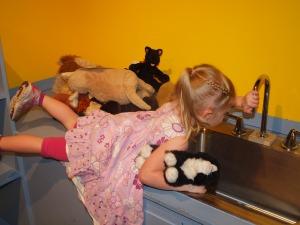Children's museum vet